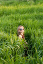 Free The Child In A Grass Royalty Free Stock Image - 5389766