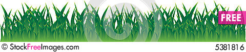 Free Real Grass Royalty Free Stock Image - 5381816
