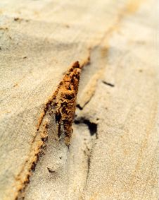 Free Sand Detail Royalty Free Stock Image - 5381116