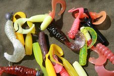 Free Baits Royalty Free Stock Photo - 5381305