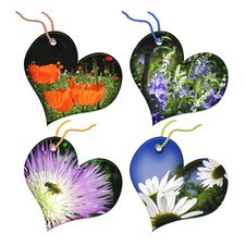 Free Gift Tags In The Form Of Heart. Stock Photos - 5381483