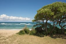 Free Inviting Tropical Shore On The Kauai Coast Stock Images - 5382804