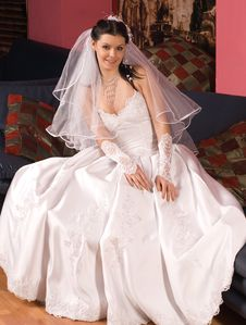 Free The Bride Royalty Free Stock Photography - 5382817