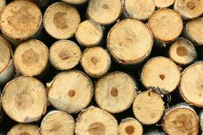 Free Wood Stock Royalty Free Stock Photo - 5383205
