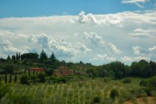 Free Val D  Orcia Royalty Free Stock Photos - 5383418