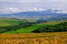 Tuscany June Countryside Royalty Free Stock Images