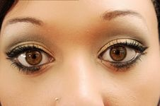 Free The Beautiful Eyes Of A Woman. Royalty Free Stock Images - 5383919