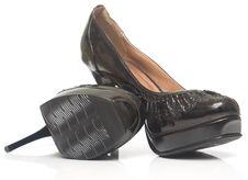 Free Female Shoe Stock Photography - 5386222