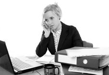 Free Businesswoman In Office Royalty Free Stock Photos - 5386738