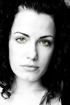 Free Close Portrait Stock Image - 5387351