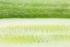 Free Cucumber Stock Image - 5387371