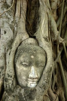 Thailand Ayutthaya Wat Phra Mahathat Stock Photos