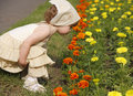 Free Smelling The Blooming Folwers Stock Image - 5391291