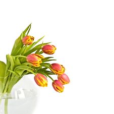 Free Beautiful Bouquet Of Tulips Royalty Free Stock Images - 5390009