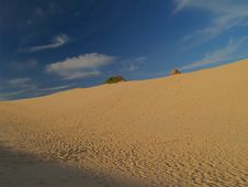 Cronulla Sand Dunes Royalty Free Stock Images