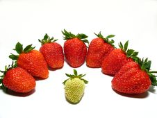 Strawberrys Background Royalty Free Stock Photo