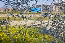 Free Broken Glass Royalty Free Stock Photos - 5392418