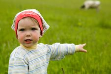 Baby In A Field Stock Photography