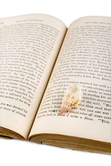Free Seashell On The Old Book Stock Photos - 5394743