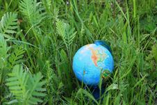 Free The Globe In A Grass Stock Photos - 5394783