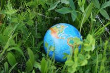 Free The Globe In A Grass Royalty Free Stock Image - 5394826