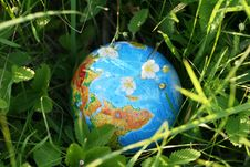 Free The Globe In A Grass Stock Photos - 5394833