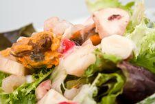 Sea Aftermath Salad Stock Photo