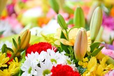 Free Flowers Background Stock Photography - 5395972