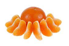 Free Mandarine Stock Photo - 5396250