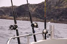 Free Sea Fishing Stock Photography - 5396772