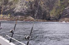 Free Sea Fishing Royalty Free Stock Photo - 5396775