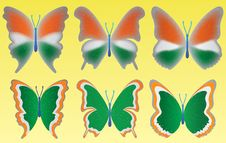 Free Tri Color Butterfly On Yellow Background Royalty Free Stock Photo - 5397465