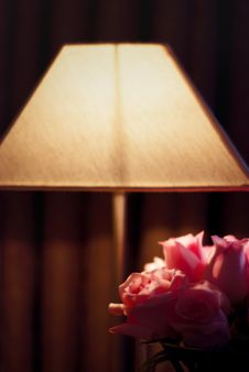 Free Flowers By The Lamp Stock Images - 5398284