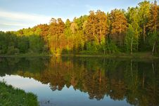Free Lake In The Forest Royalty Free Stock Images - 5398569