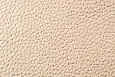 Free Natural Leather Texture Stock Images - 5399024