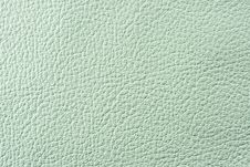 Free Natural Leather Texture Royalty Free Stock Image - 5399056
