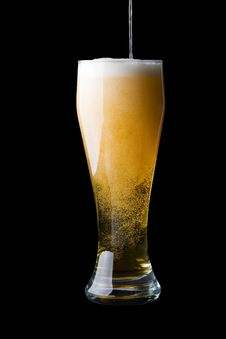 Free Fresh Foamy Beer Royalty Free Stock Photography - 5399327