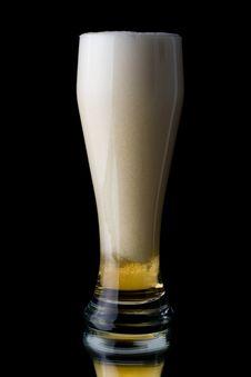 Free Fresh Foamy Beer Royalty Free Stock Photo - 5399495