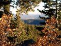 Free Jemez Mountain Trail Royalty Free Stock Images - 545069