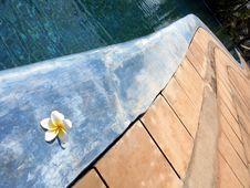 Free Pooldetail Stock Photos - 540063