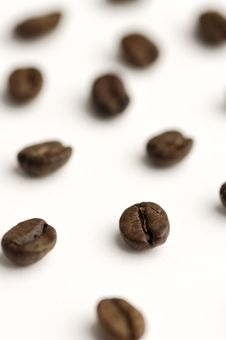 Free Coffee Beans Royalty Free Stock Photography - 541857