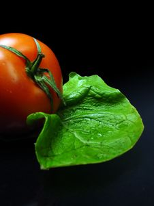 Free Tomato And Salat Royalty Free Stock Image - 543246