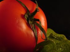 Free Fresh Tomato Closeup Royalty Free Stock Photography - 543247
