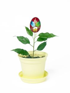 Free Potted Easter Egg Royalty Free Stock Photo - 544485