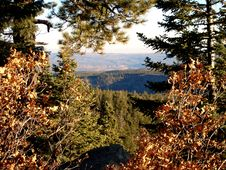 Free Jemez Mountain Trail Royalty Free Stock Images - 545069