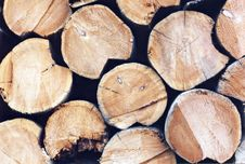 Free Stack Of Firewood Royalty Free Stock Photos - 546788