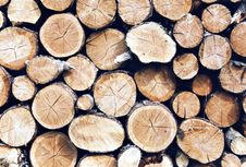 Free Stack Of Firewood Stock Photo - 546790