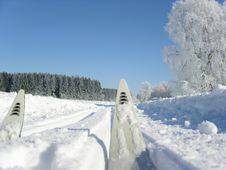 Free Ski On Tour Stock Photo - 548190