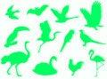 Free Birds Silhouette Royalty Free Stock Photos - 5404308