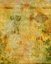 Free Grunge Background Stock Photo - 5408470